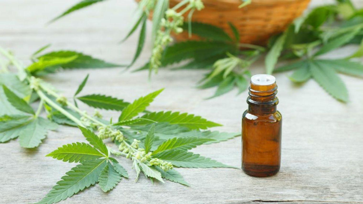 Aceite de cannabis ya está a la venta en Paraguay