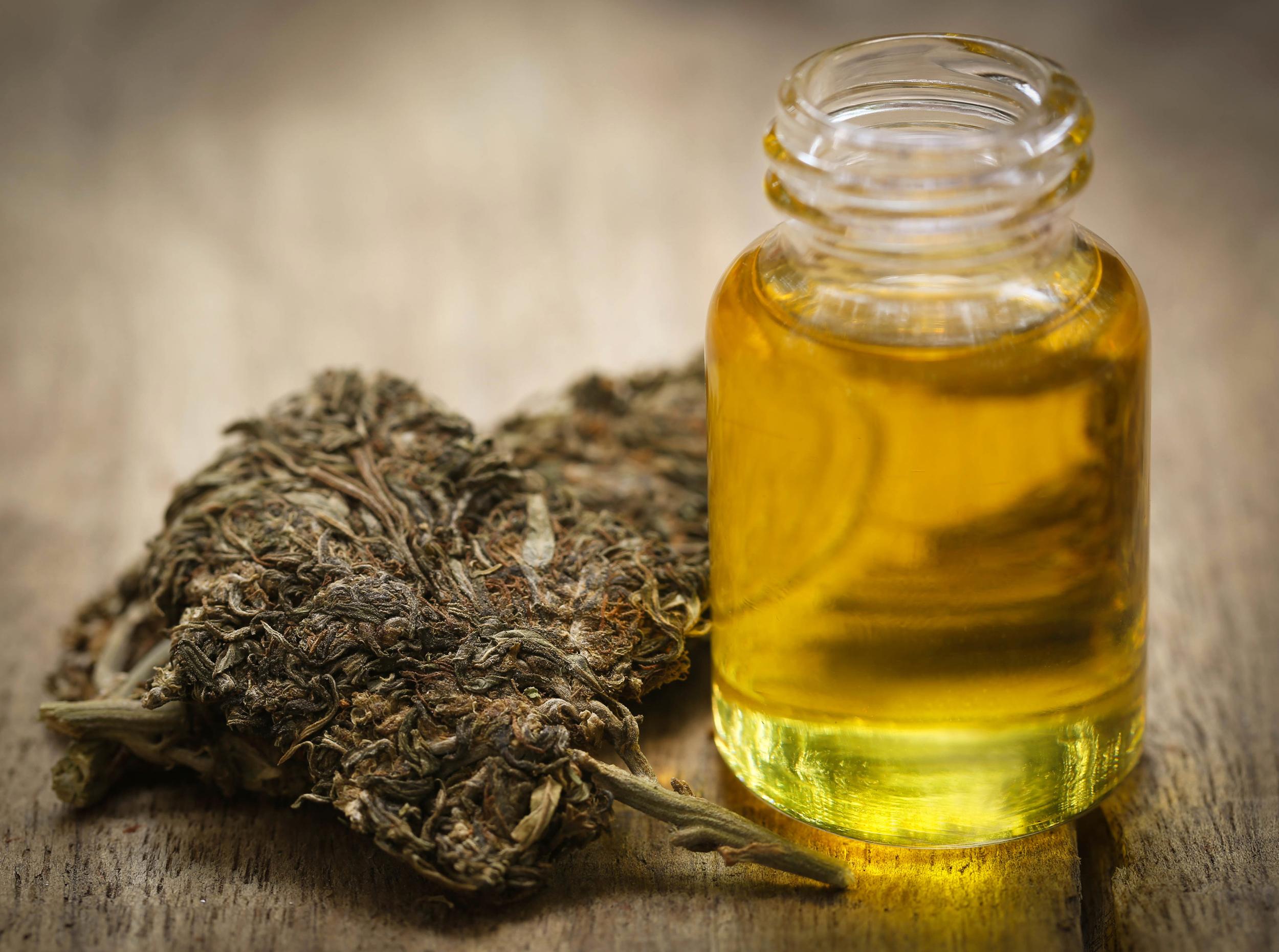 Aceite de cannabis fabricado en casa