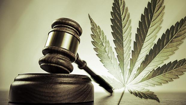 Las paradojas del cannabis y la ley