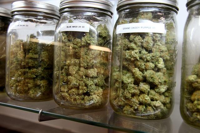Ranking: las 10 enfermedades que se curan con cannabis