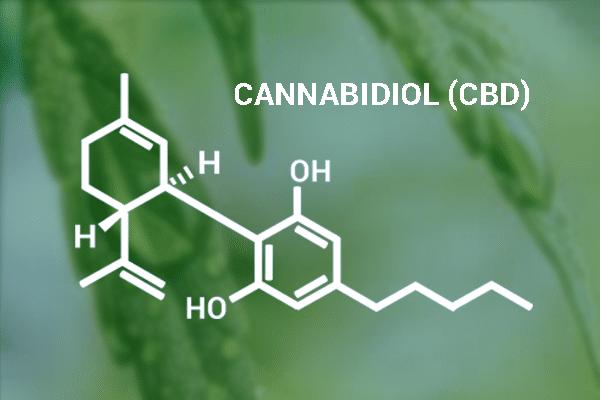 El cannabidiol deja de ser una sustancia prohibida por la AMA