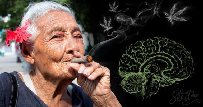 ¿La marihuana medicinal puede tratar la enfermedad del Parkinson?
