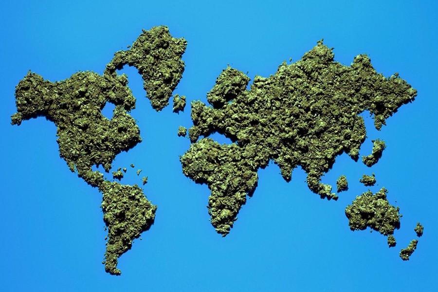 Cómo anda la legislación del cannabis en algunos lugares del mundo
