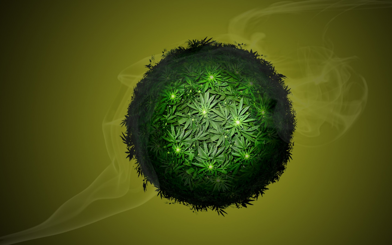 Cultivo de cannabis salvaría al planeta