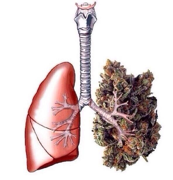 CDB para el cáncer de pulmón: lo que sabemos hasta ahora