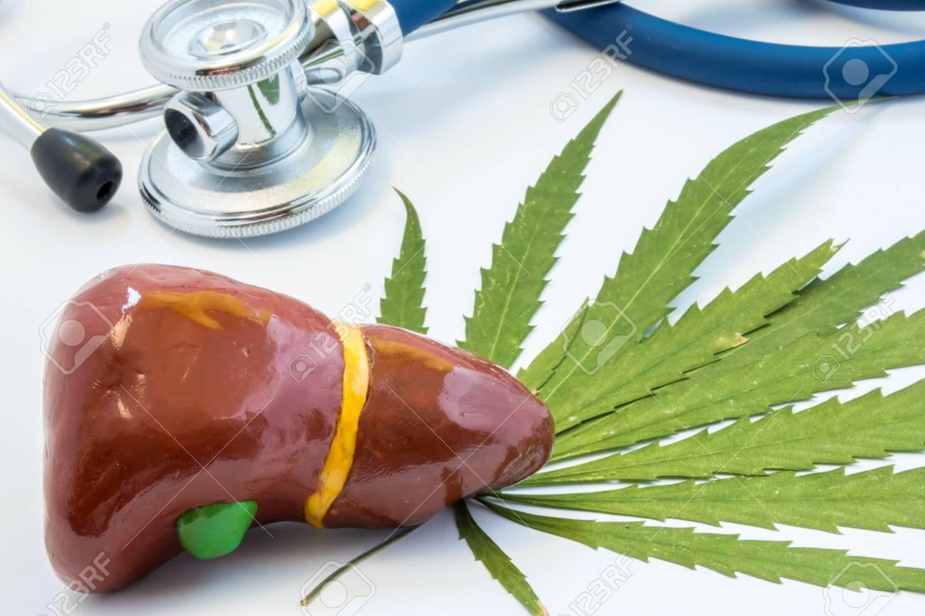 El cannabinoide del cannabis CBD ¿para tratamiento del cáncer de hígado?