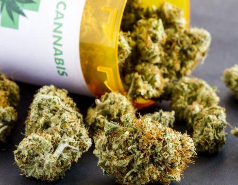 ¿Cannabis medicinal para cuidados paliativos?