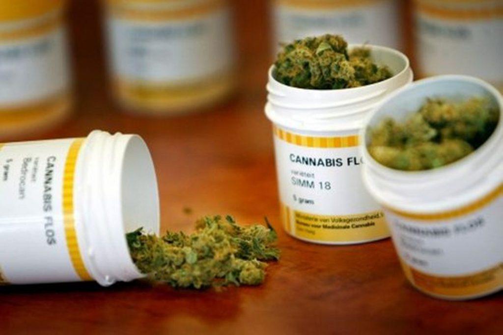 Estudio, cannabis medicinal mejoraría la calidad de vida relacionada con la salud