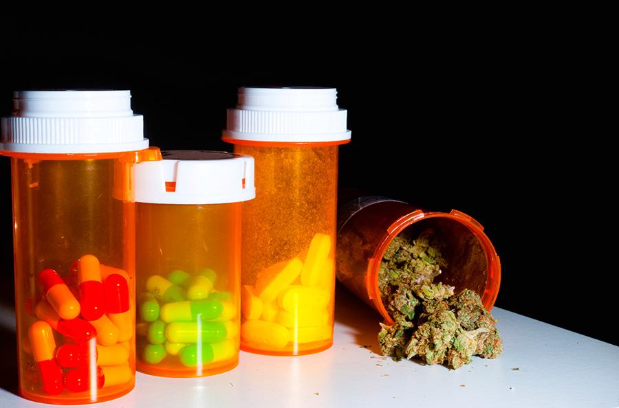 El CBD podría utilizarse para reducir la resistencia a los antibióticos