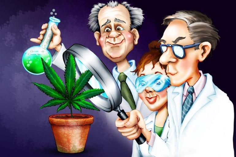 Estudio: consumo de cannabis asociado con neuroprotección en pacientes con VIH