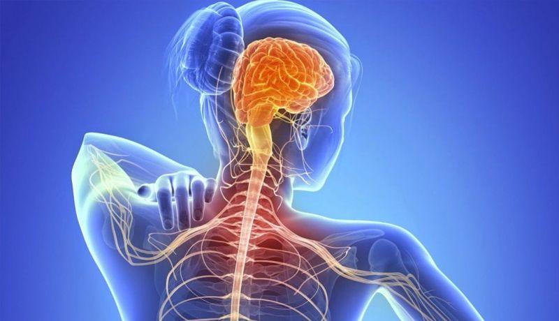 Cannabis medicinal y esclerosis lateral amiotrófica