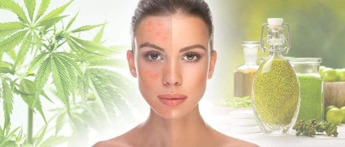 El sistema endocannabinoide en la piel