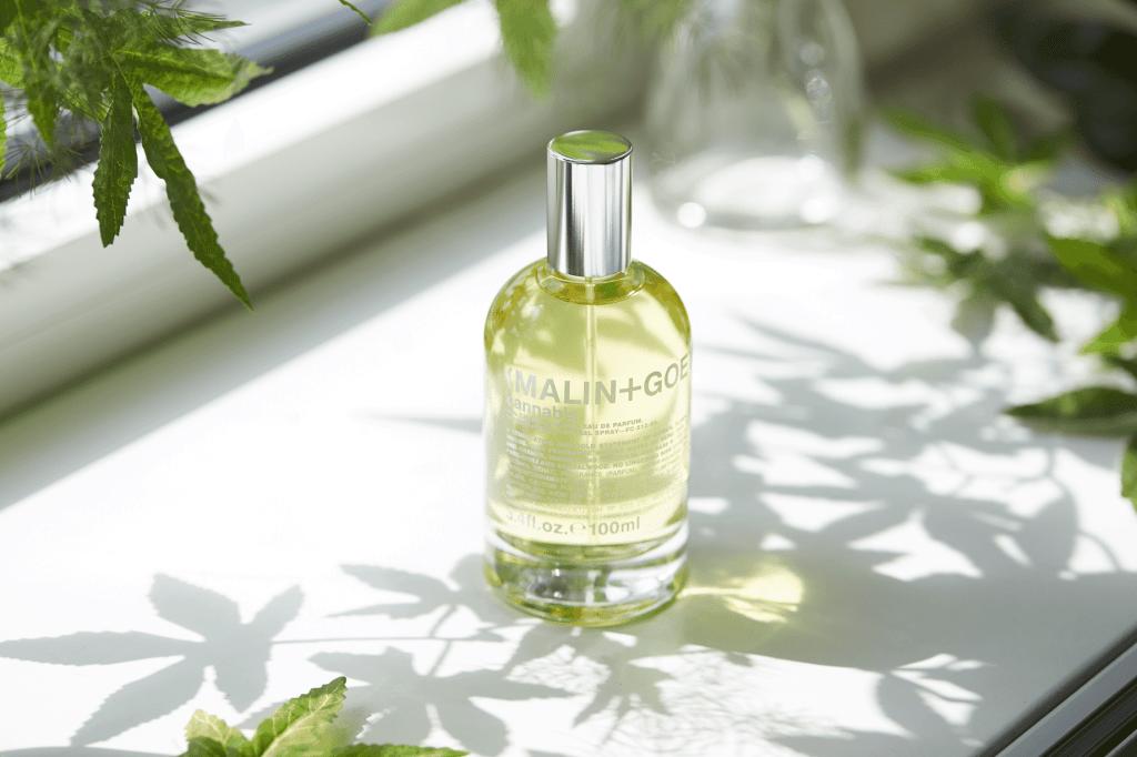 Perfumes con cannabis: ¡lo último en fragancias!
