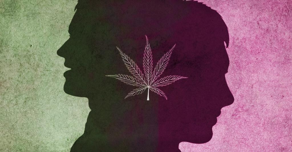 El trastorno bipolar y el cannabis medicinal