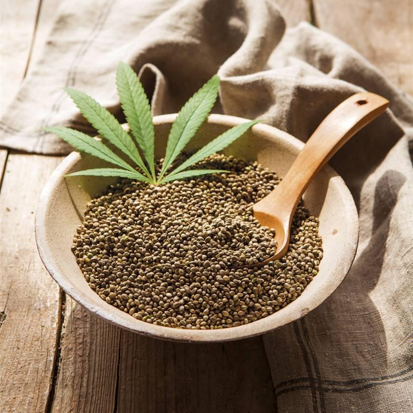 6 razones por las que usted debe comer semillas de cáñamo