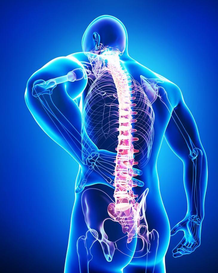 Crema de CBD eficaz para el dolor de espalda, dice estudio